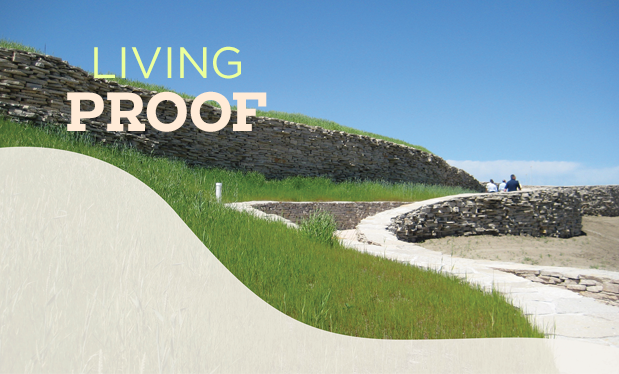 Living proof - Vegetative roof systems can help you gain environmentally conscious customers