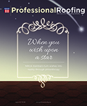 Professional Roofing 08/01/2017