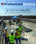 Professional Roofing 12/01/2017