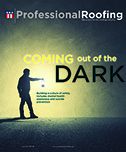 Professional Roofing 07/01/2017