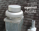 The fight against algae  - Manufacturers have a long history of trying to curb algae growth on shingles