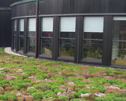 A natural fit - The roofing industry is positioned to lead the vegetative green roofing movement