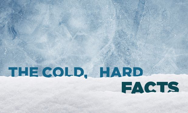 The cold, hard facts - Cold-storage facilities require unique roof system installation guidelines