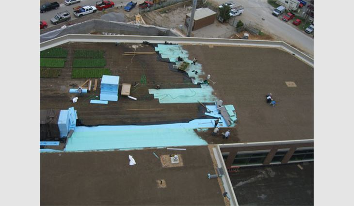 Before installing the overburden, Construction Services loose-laid a polypropylene composite with a drainage core and a water-retention fabric on one side on the waterproofed deck.