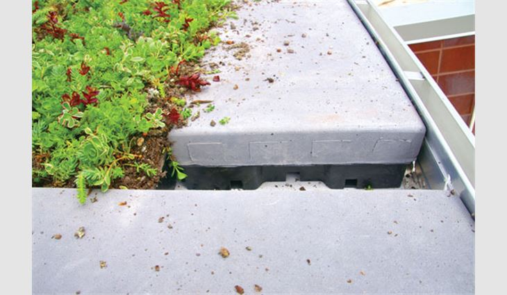A cross-section of an incomplete detail where the vegetative trays meet the outlining paver system