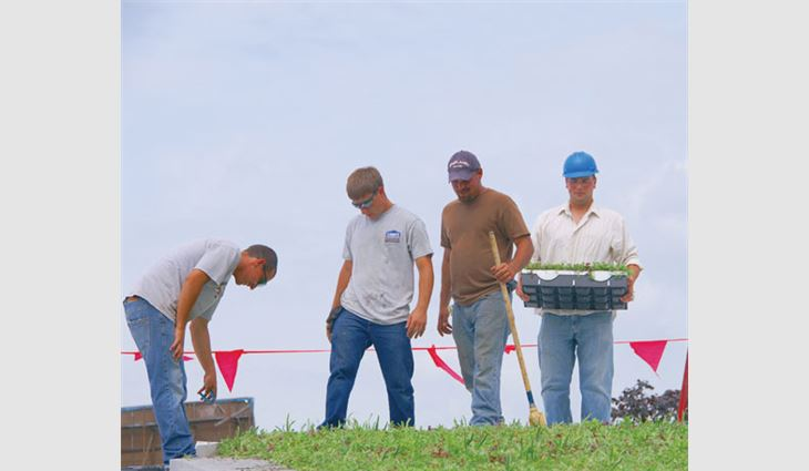 Wm. Molnar Roofing employees install LiveRoof® vegetative trays.