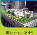 Digging into green - Southern Illinois University Edwardsville performs extensive green roof system research